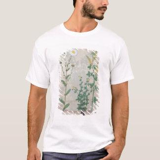 Illustration 'vom Buch von einfachem T-Shirt