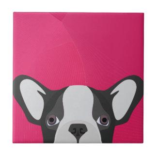 Illustrations-französische Bulldogge mit rosa Fliese