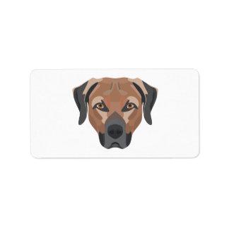 Illustrations-Hund Brown Labrador Adressaufkleber