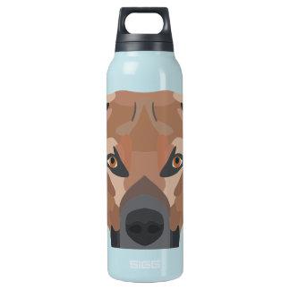 Illustrations-Hund Brown Labrador Isolierte Flasche