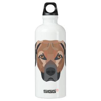 Illustrations-Hund Brown Labrador Wasserflasche