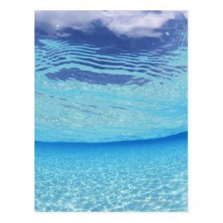 Im Meer Postkarte