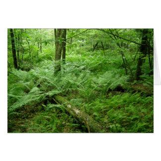 Im Wald Karte