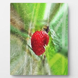 image Erdbeere in Pastell Fotoplatte