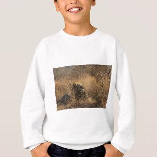 IMG_1679.jpg Sweatshirt