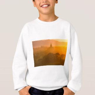 IMG_1895.jpg Sweatshirt