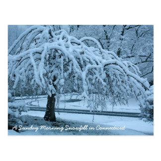 IMG_2425_2, Schneefälle Sonntag Morgen in Connec… Postkarte