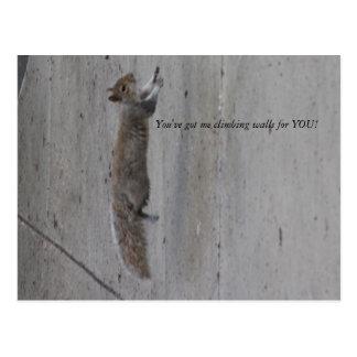 IMG_3995, haben Sie mich kletternde Wände für SIE! Postkarte