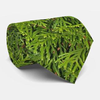 Immergrüne Baum-Niederlassungs-Krawatte Krawatte