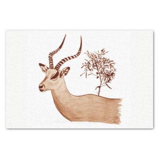 Impala-Antilopen-Tierwild lebende tiere, die Seidenpapier