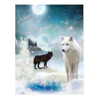 In den Mystiker wild Postkarte