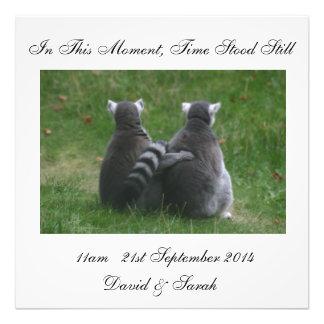 In diesem Moment stand Zeit noch - Lemur-Liebe Fotodruck