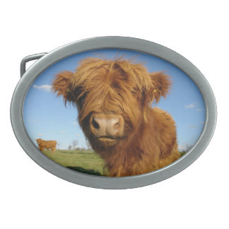 In Ihrer Gesichts-Kuh-Gürtelschnalle Ovale Gürtelschnalle