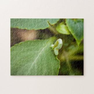 Inchworm auf Blatt-Fotopuzzlespiel Puzzle