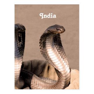 Indien-Kobra Postkarte