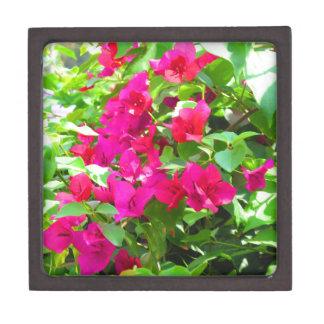 Indien-Reise-Blumen-Bouganvilla-Blumenemblem Schachtel