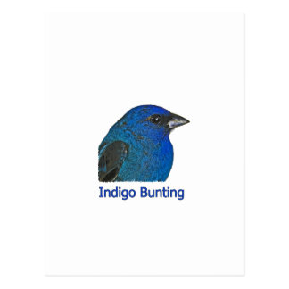 Indigo-Flaggen-Logo Postkarte