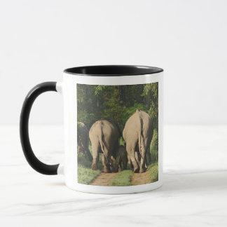 Indische Elefanten auf der Dschungelbahn, Corbett Tasse