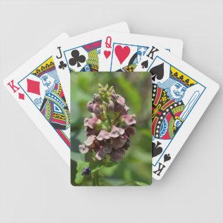 Indische Kartoffel-Wildblume Bicycle Spielkarten
