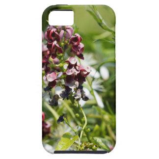 Indische Kartoffel-Wildblume Etui Fürs iPhone 5
