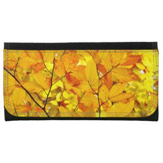 Indischer Sommer, gelber Herbst-Herbstlaub