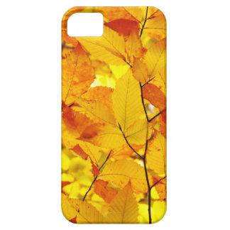 Indischer Sommer, gelber Herbst-Herbstlaub Etui Fürs iPhone 5