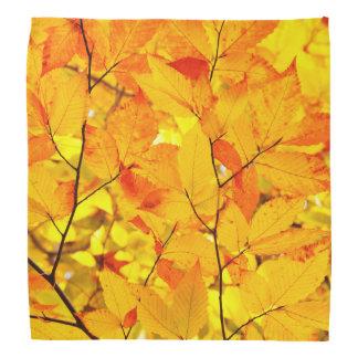 Indischer Sommer, gelber Herbst-Herbstlaub Halstuch