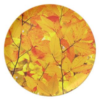 Indischer Sommer, gelber Herbst-Herbstlaub Melaminteller