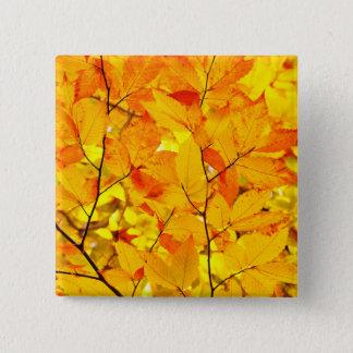 Indischer Sommer, gelber Herbst-Herbstlaub Quadratischer Button 5,1 Cm