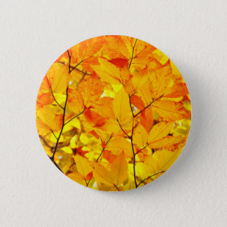 Indischer Sommer, gelber Herbst-Herbstlaub Runder Button 5,1 Cm