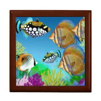 Indo pazifische Riff-Fisch-Geschenkboxen Geschenkbox