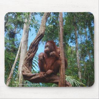 Indonesischer Regenwald-Lounging Stuhl Mousepad