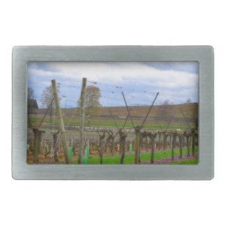ineyard, Weinreben die französische Landschaft Rechteckige Gürtelschnalle