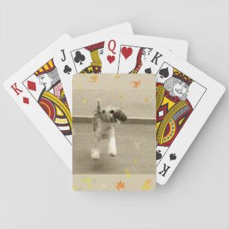Ingwer-Draht-Foxterrier Spielkarten