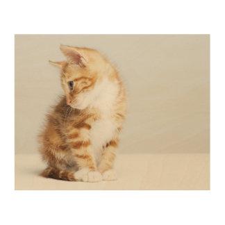 Ingwer-Kätzchen Holzdruck