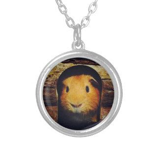 Ingwer-Meerschweinchen-Geschenke Halskette Mit Rundem Anhänger