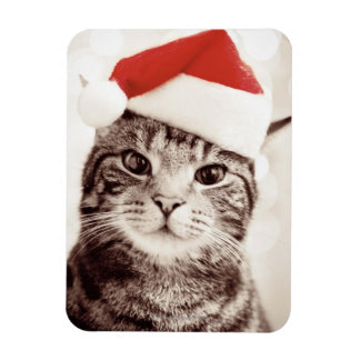 Inländische Tabbykatze, die roten Weihnachtshut Magnet