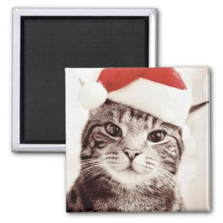 Inländische Tabbykatze, die roten Weihnachtshut Quadratischer Magnet