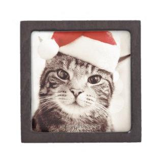 Inländische Tabbykatze, die roten Weihnachtshut Schachtel