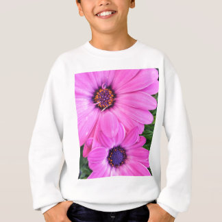 Innerhalb der rosa lila sweatshirt