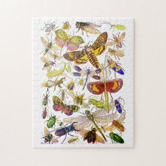 Insekten-Puzzle   gruseliges Crawlies Puzzle