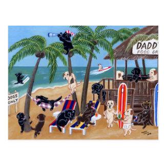 Insel-Sommer-Ferien Labradors Postkarte