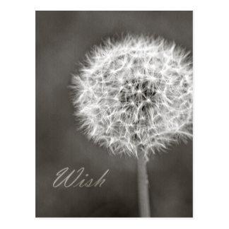 Inspirierter Wunsch-Löwenzahn Postkarte