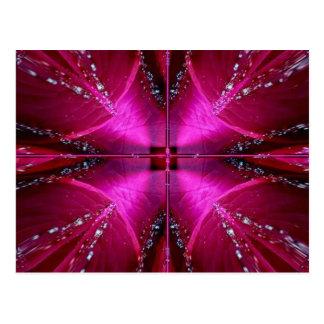 Intelligente einfache Grafiken - rote n rosa Rose Postkarte