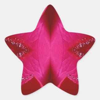 Intelligente einfache Grafiken - rote n rosa Rose Stern-Aufkleber