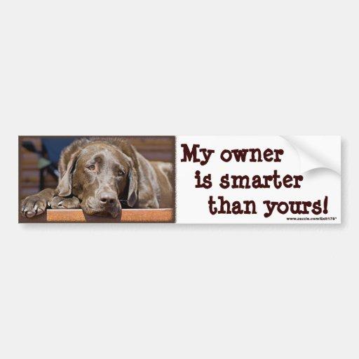 Intelligenter Schokoladen-Labrador Autosticker