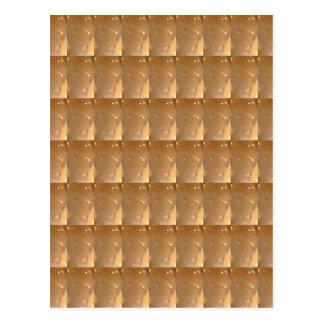 INTENSIVE Goldkeks-Collagen-Muster-Grafik Postkarte