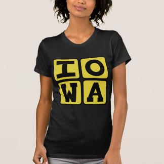 IOWA-Staat Iowan Hawkeye Des Moines ZederRapids T-Shirt