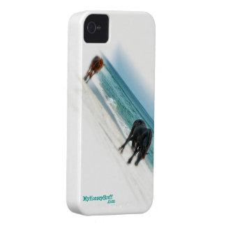 iphone 4 Fall, Pferdeentwurf, Reiter Case-Mate iPhone 4 Hülle
