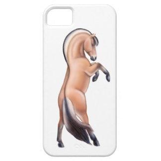 iPhone 5 ETUIS